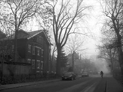 Foggy Saturday morning (11) | by andyscamera