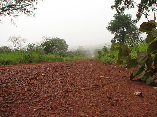 Deserted road in the Central African Republic | by friel