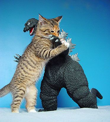 kitty vs. godzilla | by Gen Kanai