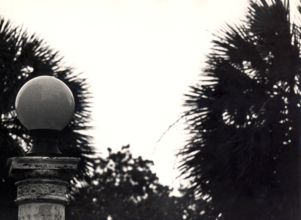 Lamp with Palm Trees, 1970s