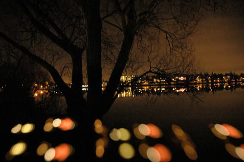 Greenlake tree and reflection, Shortly before Christmas, Seattle, Washington, USA | by Wonderlane