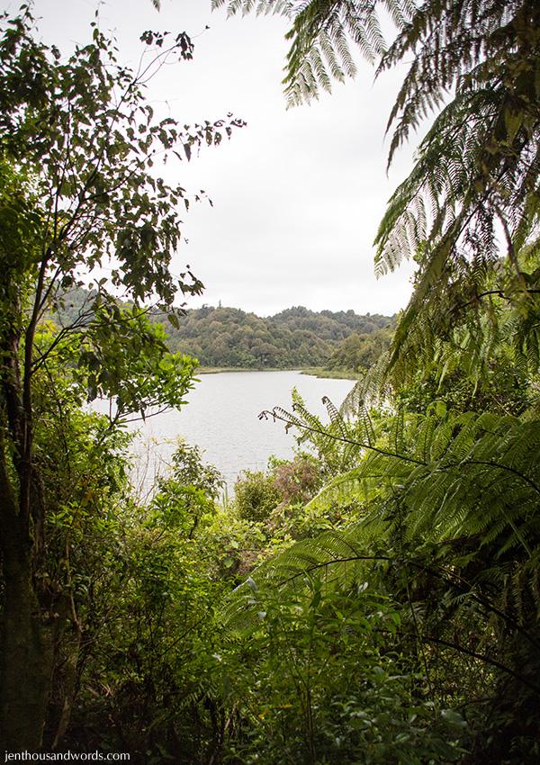 Lake Rotokare 1