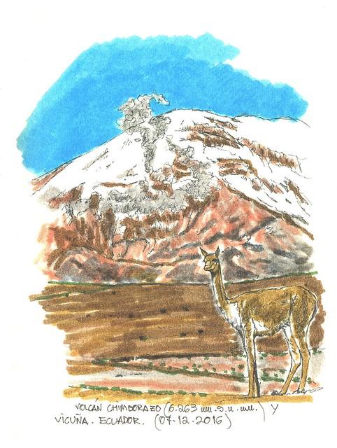 Chimborazo (6.263 m.s.n.m.)