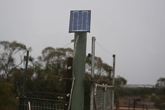 Solar-Powered Gates