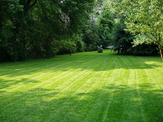 What a lawn | by heipei