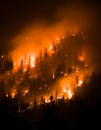 montana wildfire, forest fire | by Chris Lombardi