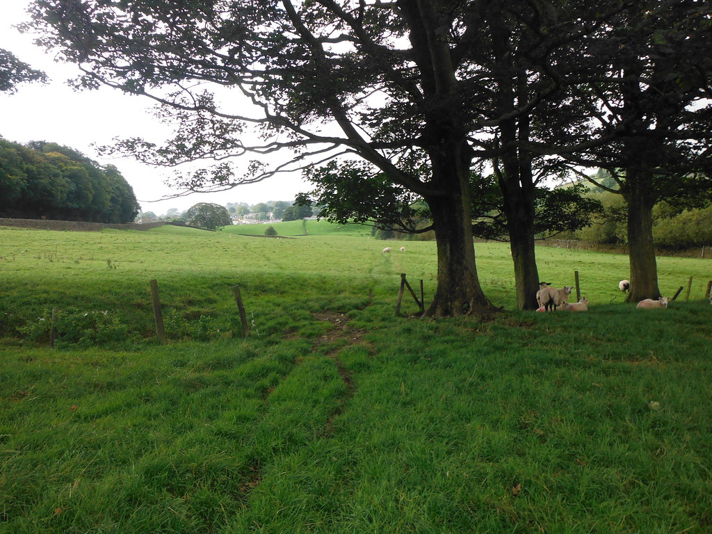 Near Foulridge 4
