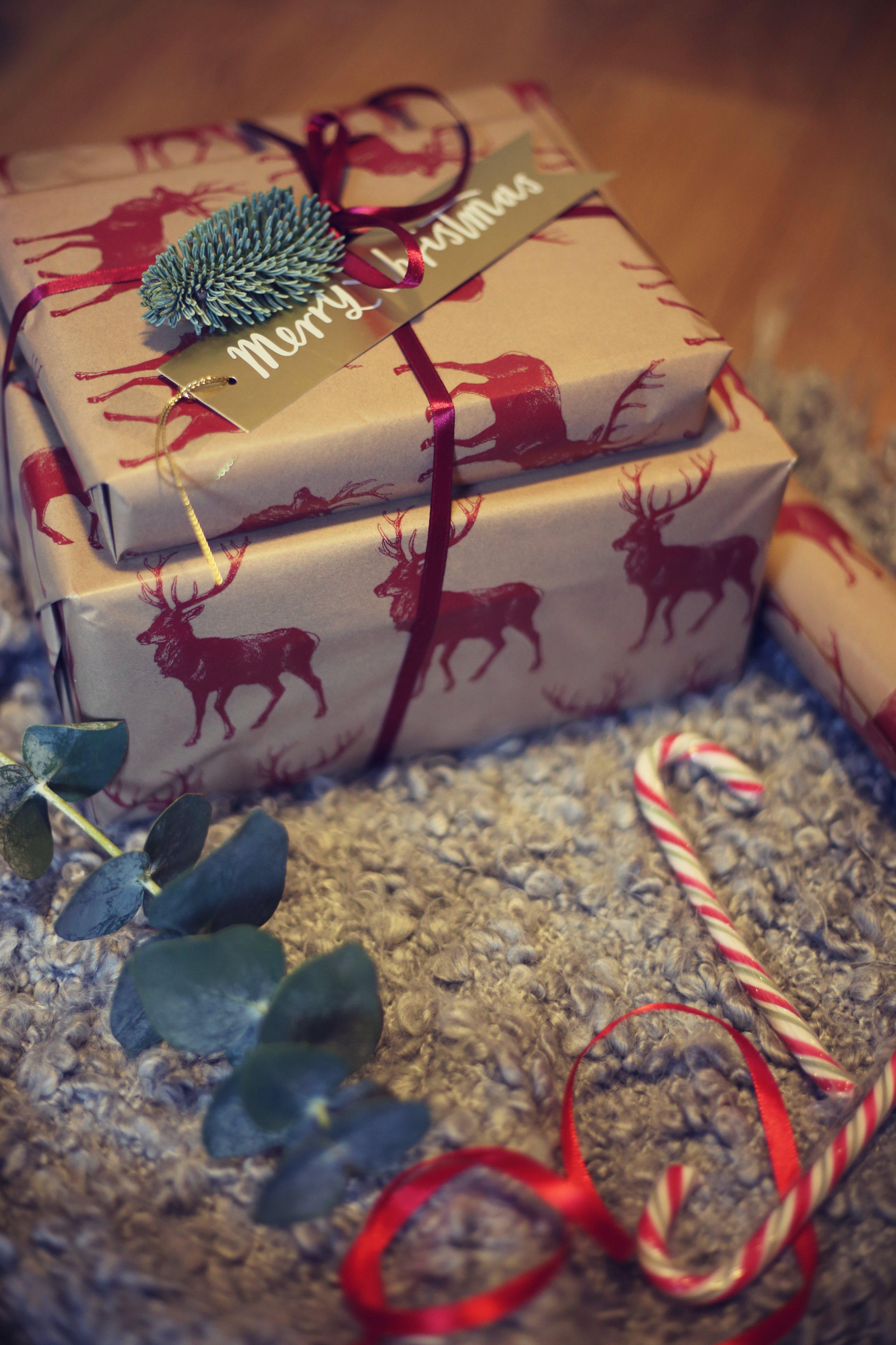 christmas photo diary