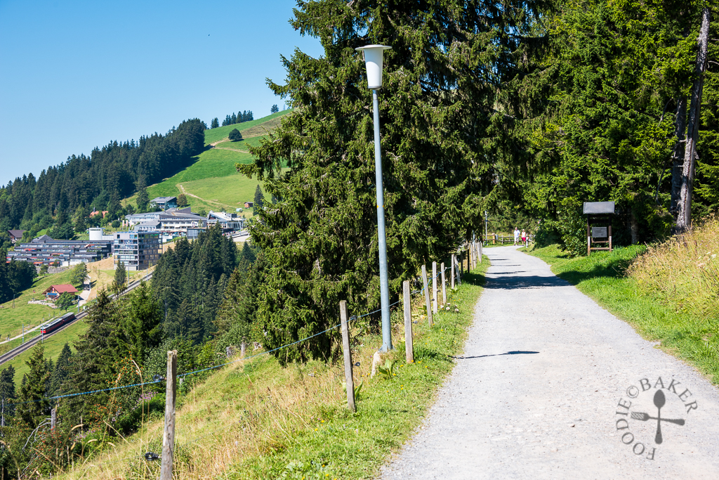 Looking back at Rigi Kaltbad