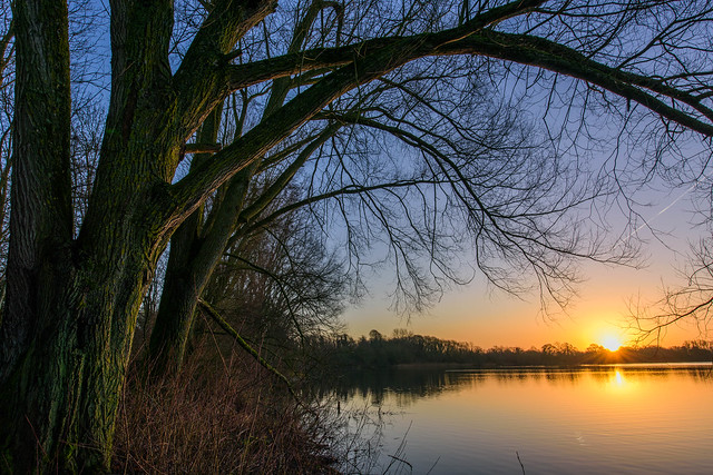 This morning's sunrise at Cotswold waterpark.