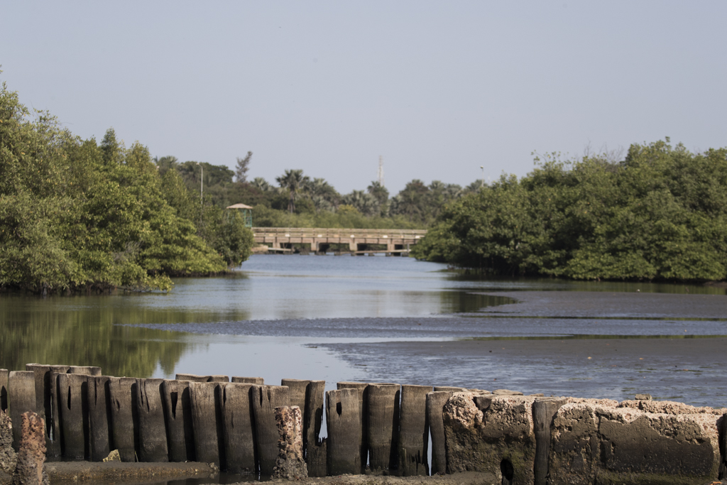 Gambia Kotu Creek and bridge