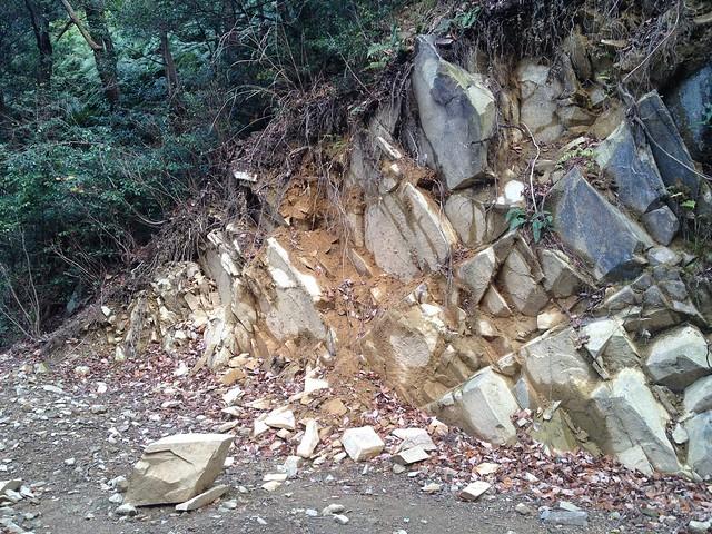 月見の森 さえずりの小径 崖崩れ