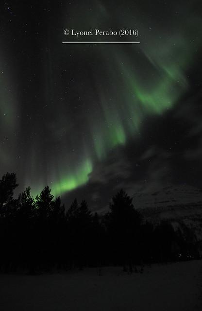 Northern_Lights_20_12_2016_III