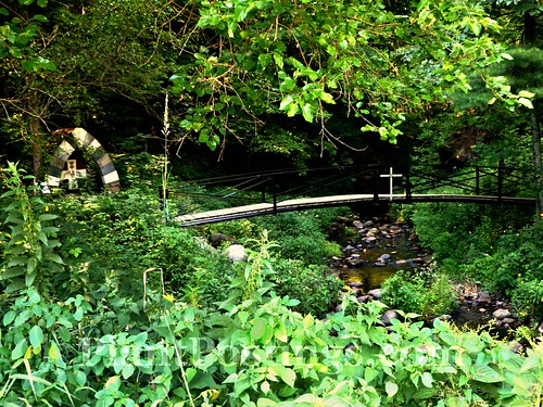 stream and bridge