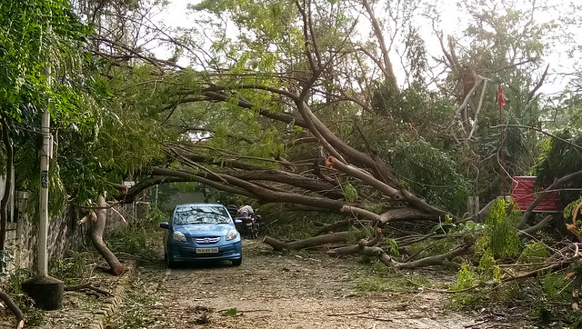 Thousands of trees were uprooted all across the city blocking arterial roads and thoroughfares. Howling winds clocking speeds close to 110 km/hr hit Chennai as Vardah prepared to make landfall around afternoon on December 12, 2016.