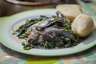 A meal of Mozambique tilapia, cabbage and potato with coconut milk, Taflankwasa village, Malaita Province, Solomon Islands. Photo by Filip Milovac.