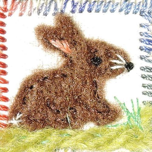 01_rabbit