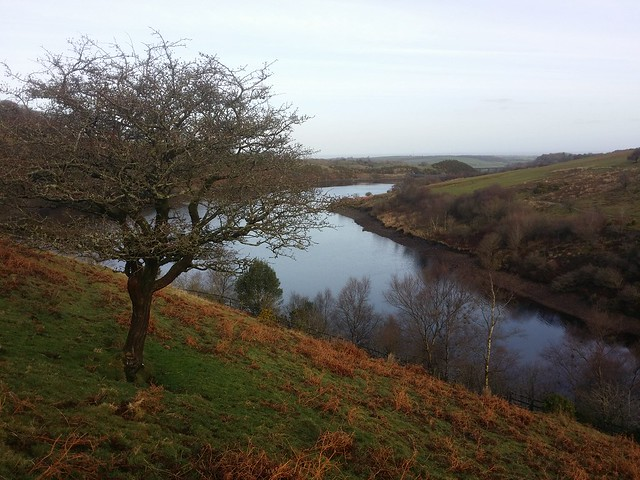 Meldon Reservoir from the lower flank of Homerton Hill