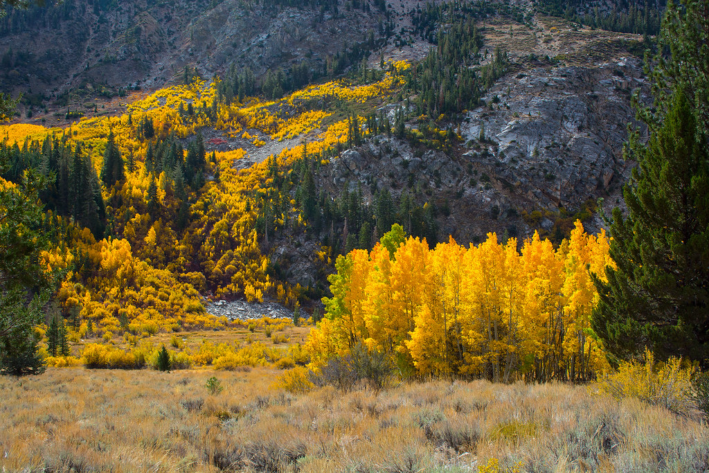 Barney Lake Fall Colors Hike #5