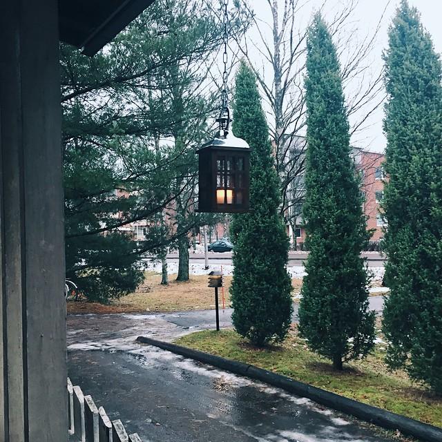 DecemberJoulukuu, joulu, christmas, sää, luonto, nature, weather, ei lunta, ei valkoista, no snow, no white, joulu 2016, christmas 2016. winter, talvi,