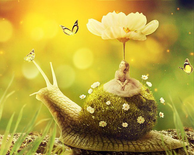 Surreal snail with a grass shell in Photoshop #3