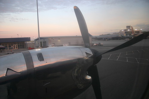 prop plane (photo friday - metallic) | by unadventurous