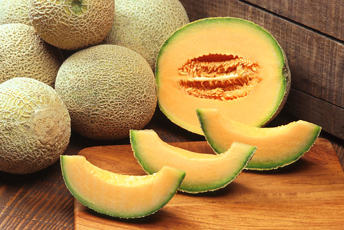 cantaloupe | by Royalty-free image collection