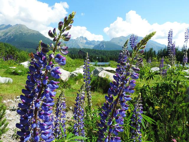 Best Photos Of 2016: Strbske pleso, High Tatras, Slovakia