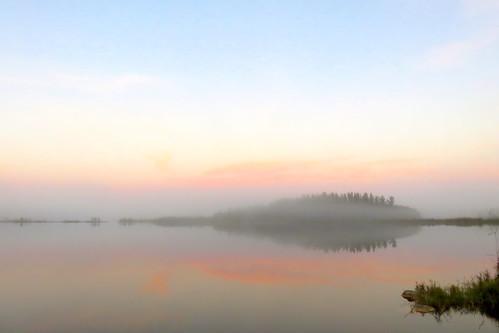 Pine Bank in fog 20161213