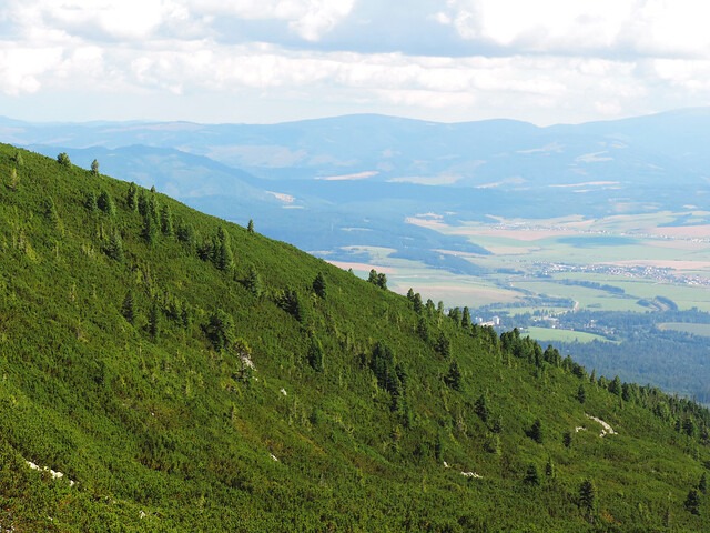 Mylnická-Furkotská Valley, High Tatras, Slovakia