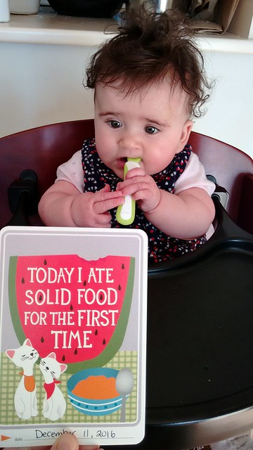 First Solid Food