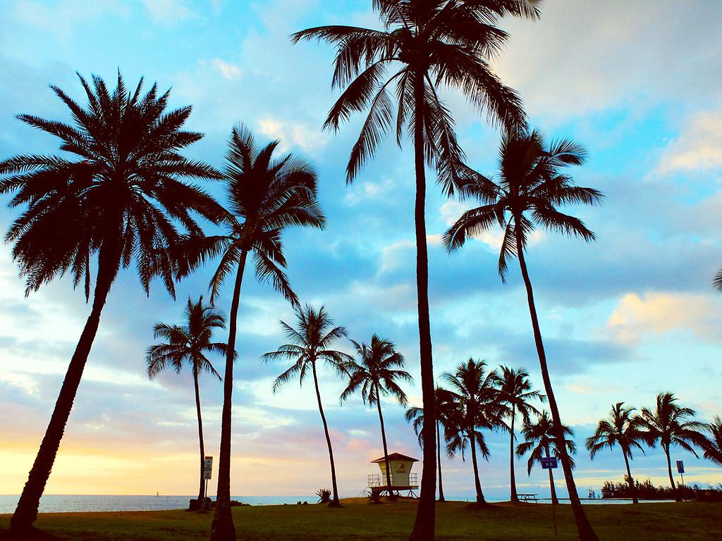 Oahu-(103)