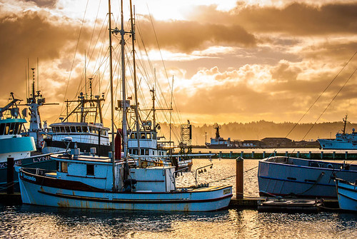 Early Morning in Newport Bay