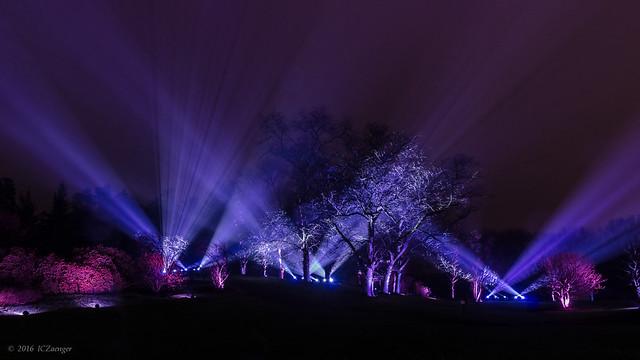 Illumination 2016 Symphony Woods 04