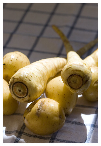 potatoes and parsnips | by Lara Ferroni
