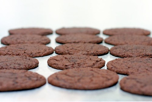 chocolate sugar cookies | by smitten kitchen