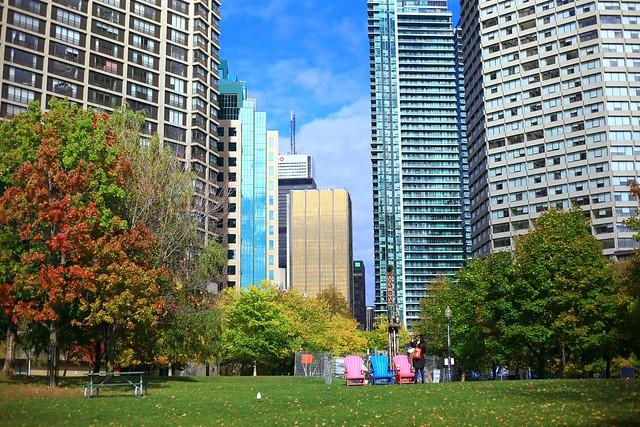 Toronto Tanvii.com 27