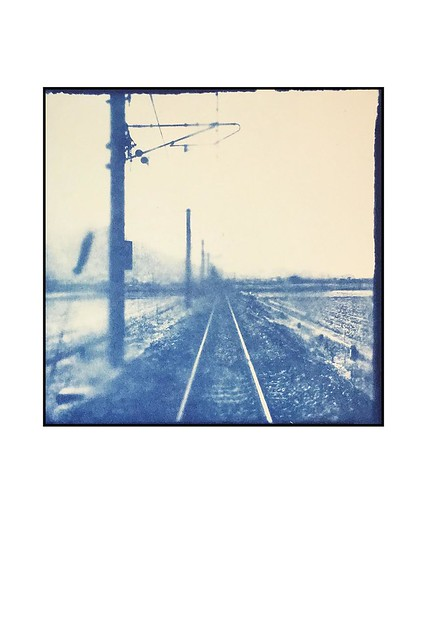 Linsey Walkerの個展「Wandering: Cyanotypes from Itoshima」を開催します