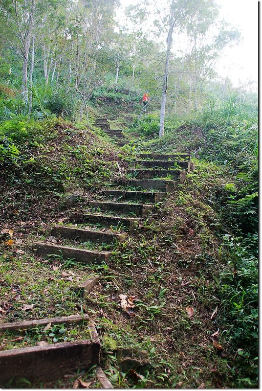 枕頭山步道 1