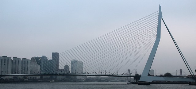 A day in Rotterdam