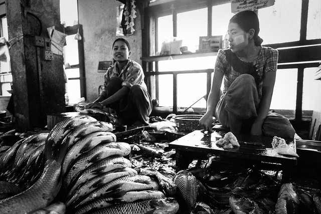 Myanmar #025