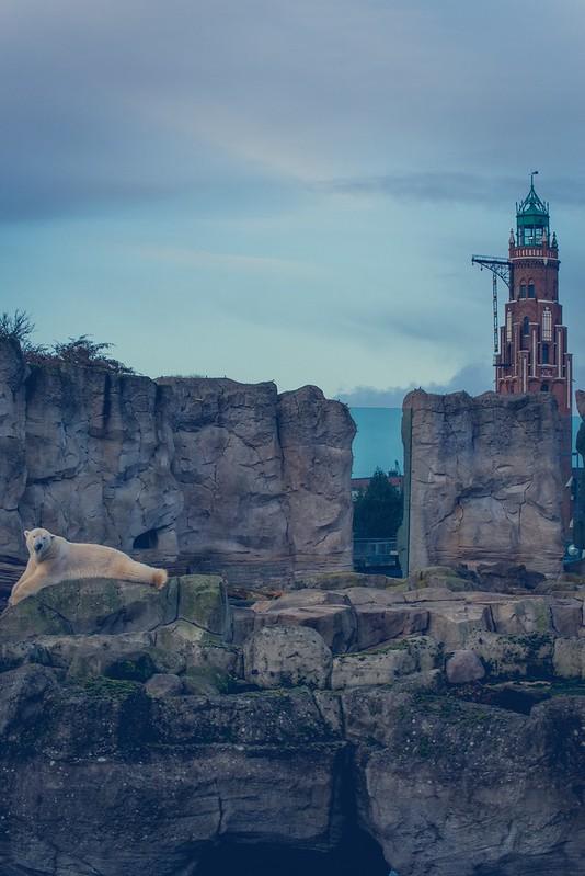 Zoo am Meer - Bremerhaven