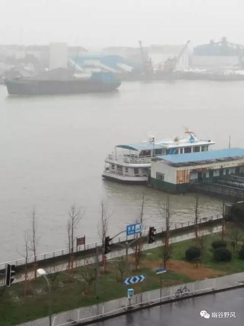 黄浦江在窒息-3