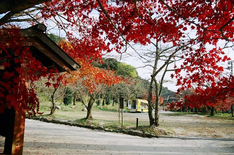移動図書館|竈門神社
