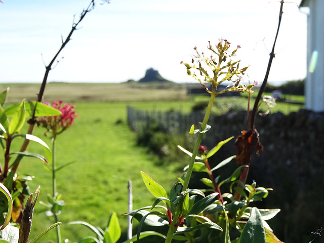 Lindisfarne Castle framed