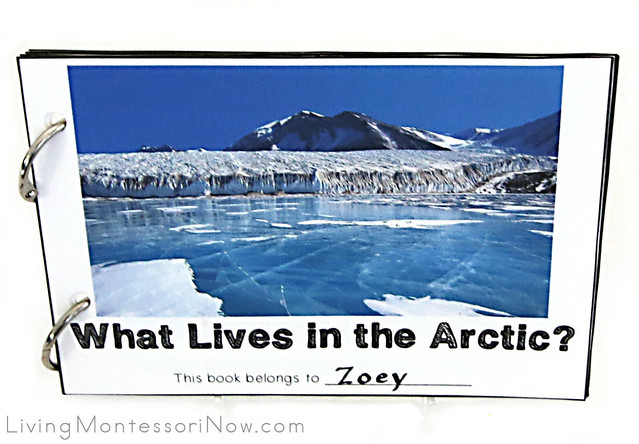 What Lives in the Arctic? Book