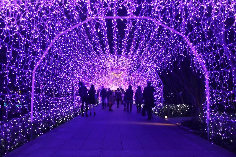travel-japan-湘南の宝石- (28)