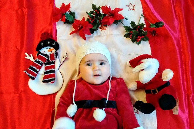 Astrid's 1st Christmas Photo Shoot