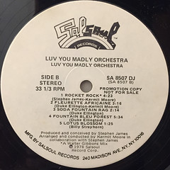 LUV YOU MADLY ORCHESTRA:LUV YOU MADLY ORCHESTRA(LABEL SIDE-B)