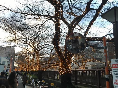 中目黒 目黒川沿いのイルミネーション 2016.12